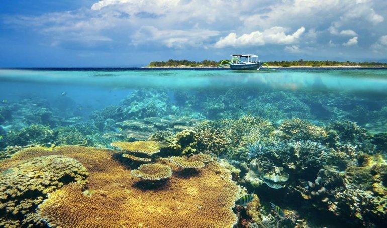 Las aguas que bañan estas playas son transparentes que propician las actividades submarinas.