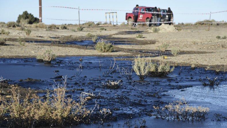 El derrame de petróleo contaminó 200 metros cuadrados de campo. La cañería antigua ya había sido reparada tiempo atrás.