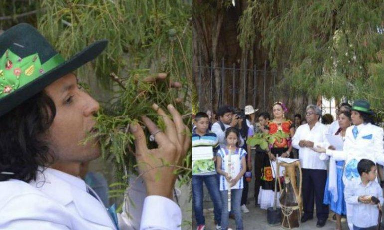Un actor peruano se casó con un árbol
