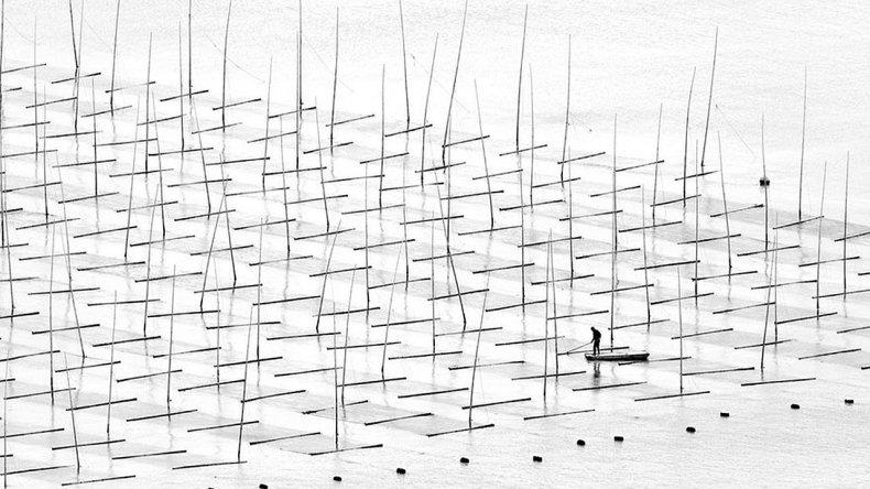 Cultivando el mar
