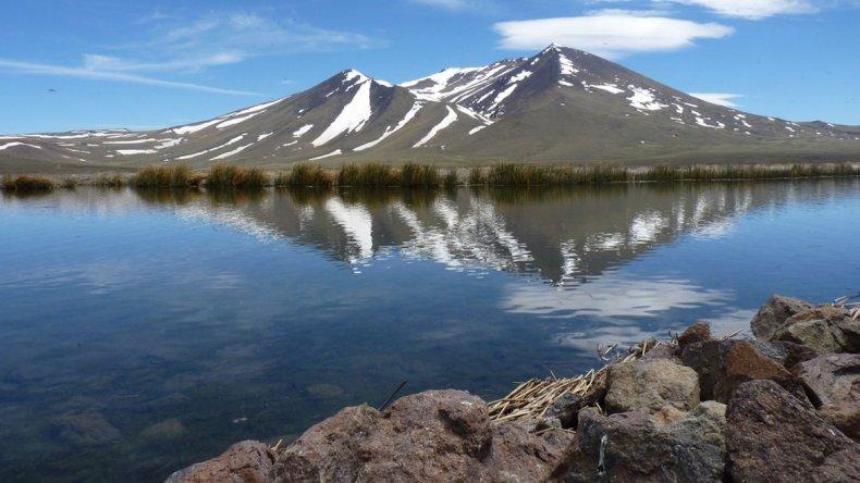 El parque se centra en la protección de las aves que viven alrededor del pequeño lago llamado Laguna Tromen.