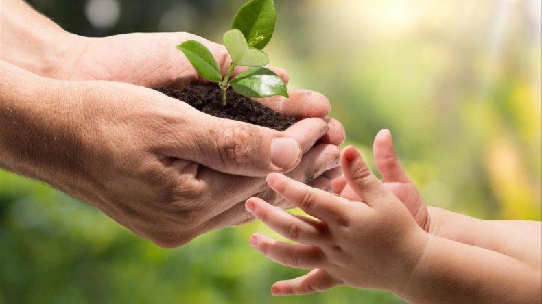 Actividades por el 43° Aniversario del Día Mundial del Ambiente