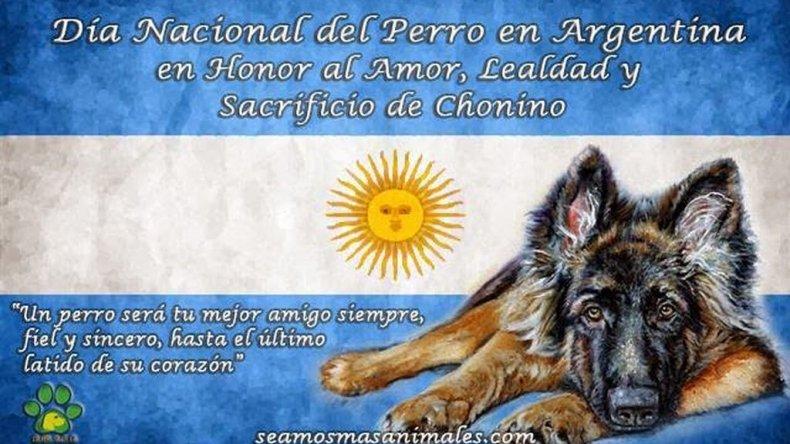 02 de Junio - Dia Nacional del Perro en Argentina. Imagen de elpatagonico.com