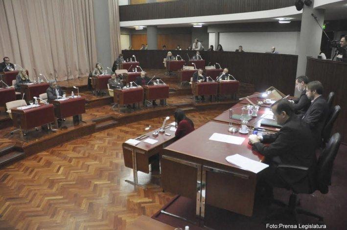 La sesión de ayer se centró en los problemas del Servicio de Protección de Derechos.