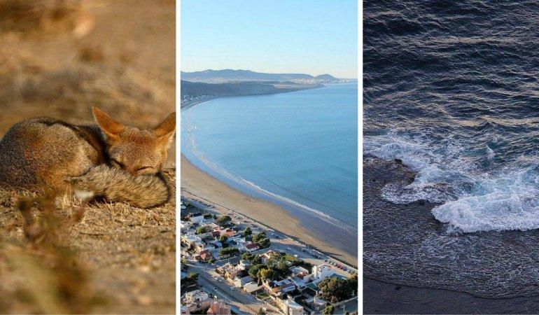 Punta Marqués Área Protegida recolecta fotos de la reserva