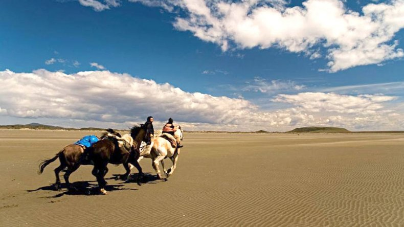 Las cabalgatas hacen un recorrido que atraviesa hermosas playas y sitios inhóspitos.