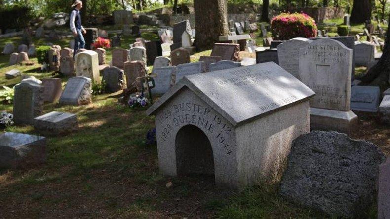 El primer cementerio de mascotas se fundó en París en 1899. Esta tendencia ha ido creciendo a lo largo de los años en distintos paises del mundo. Foto: imagen ilustrativa