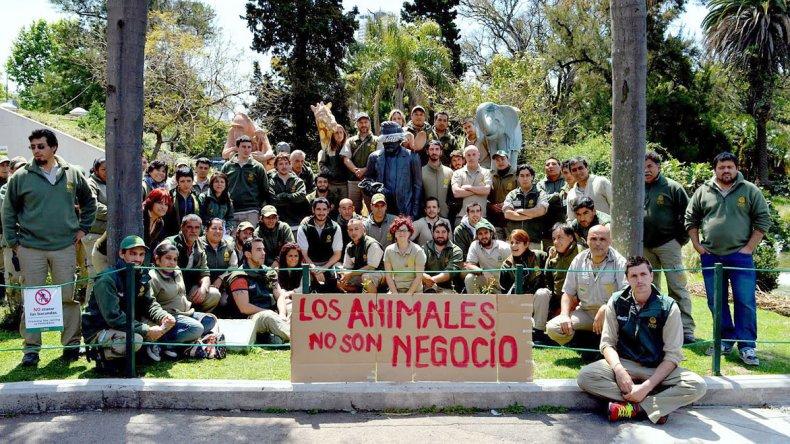 El reclamo que hace años tienen los movimientos en favor de los derechos de los animales se convirtió en realidad.