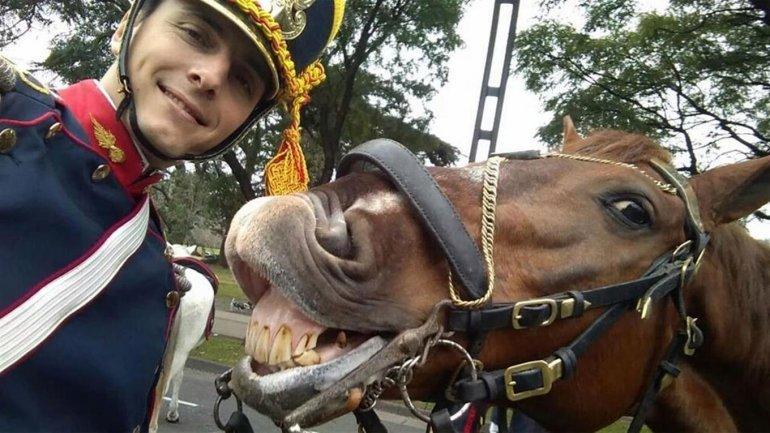 Hostil, el caballo que protagonizó la selfie más divertida del Bicentenario