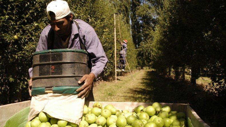 La pera registra la mayor brecha entre lo que recibe el productor y lo que se le cobra al consumidor.