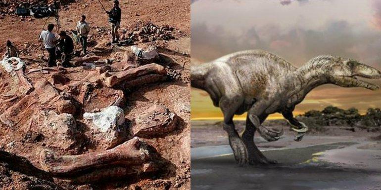 Presentaron un nuevo dinosaurio carnívoro encontrado en Neuquén