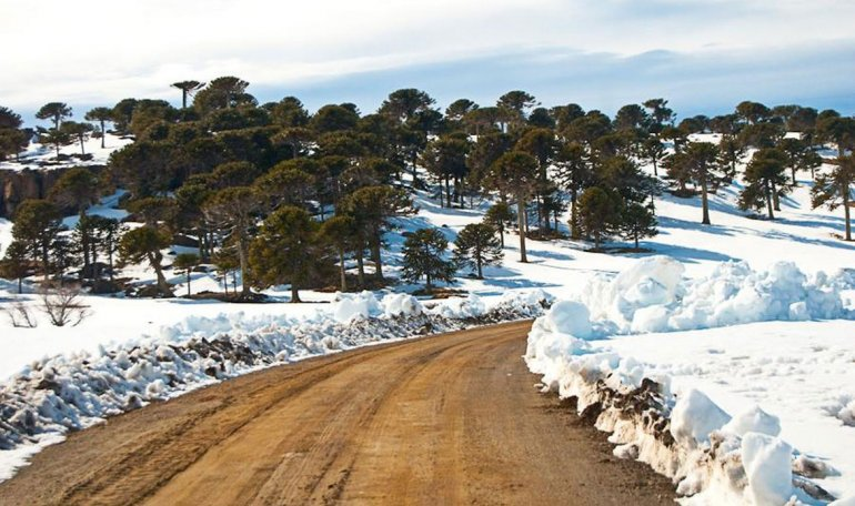El Cerro Caviahue y el Parque de nieve Batea Mahuida en invierno invitan a disfrutar de la nieve entre espectaculares paisajes.