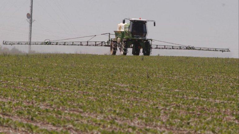 En Corrientes se juzgará a un agricultor por los efectos del uso de agroquímicos.