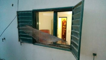 Robaron en la vivienda de Carlos Ojeda