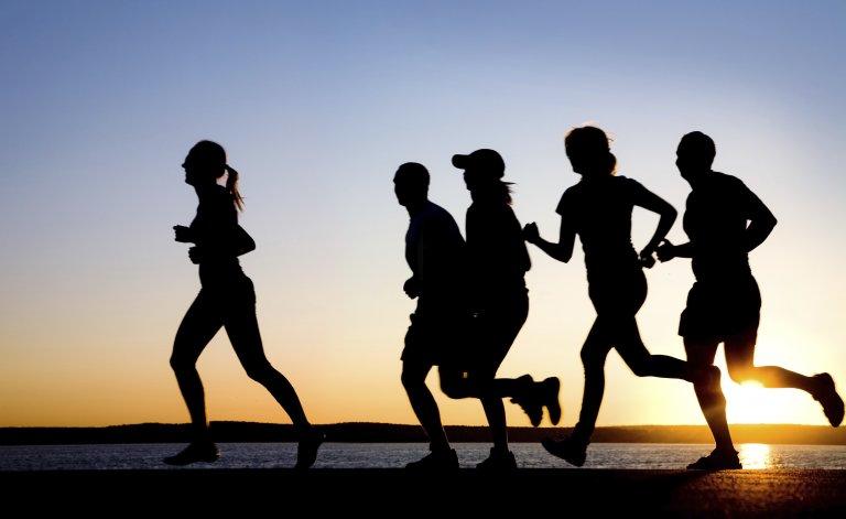Buscan regular y crear un registro de los grupos de entrenamiento al aire libre