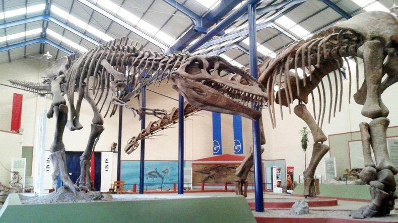 La provincia del Neuquén cuenta con grandes descubrimientos para el mundo científico y hermosos museos para recorrer y aprender.