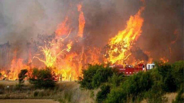 San Luis enfrenta importantes incendios forestales.