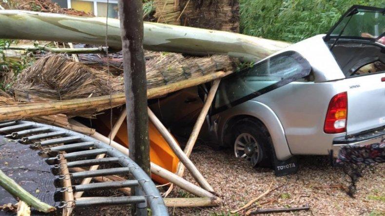 Mar del Plata: más de 200 evacuados y daños materiales por violento temporal