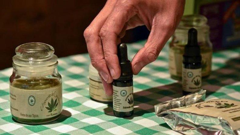 Ejecutivo provincial promulgó la ley  por el aceite de cannabis