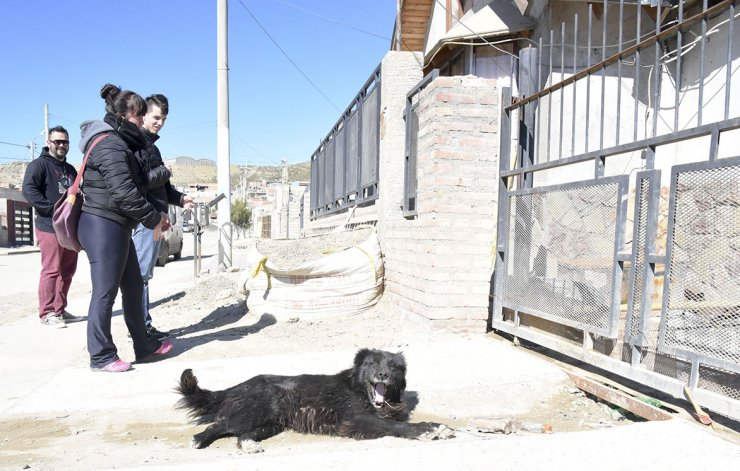 En el barrio Abel Amaya comenzó la desparasitación y el censo de perros y gatos.