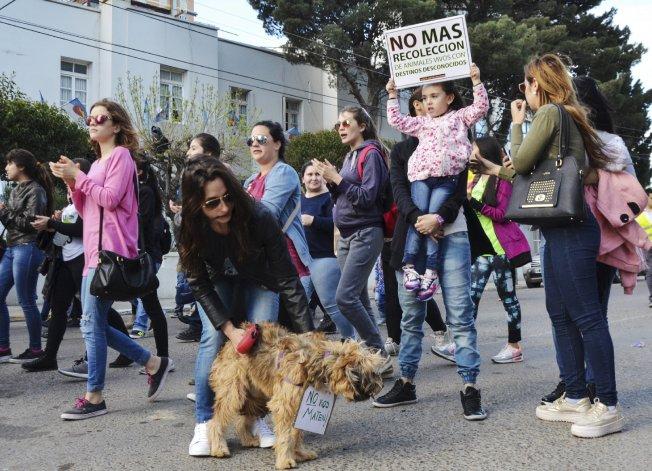 Mascoteros reclaman la ordenanza de tenencia responsable