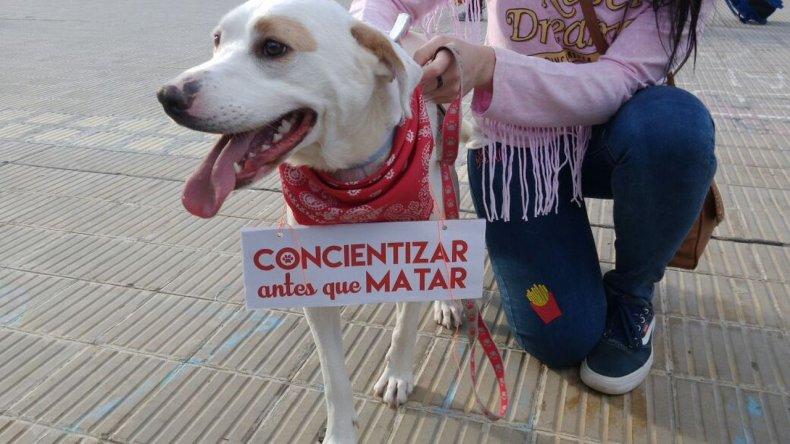 Fotos: Antonella vía WhatsApp a El Patagónico.