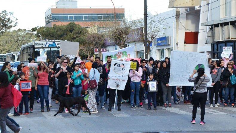 Mascoteros reclamaron la ordenanza de tenencia responsable