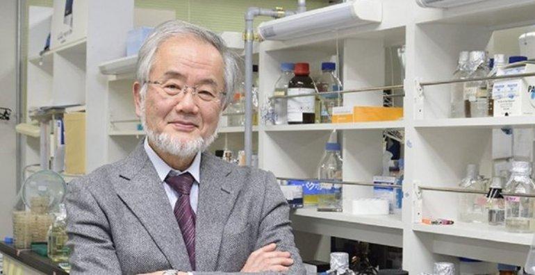 El Premio Nobel de Medicina 2016 fue para Yoshinori Ohsumi