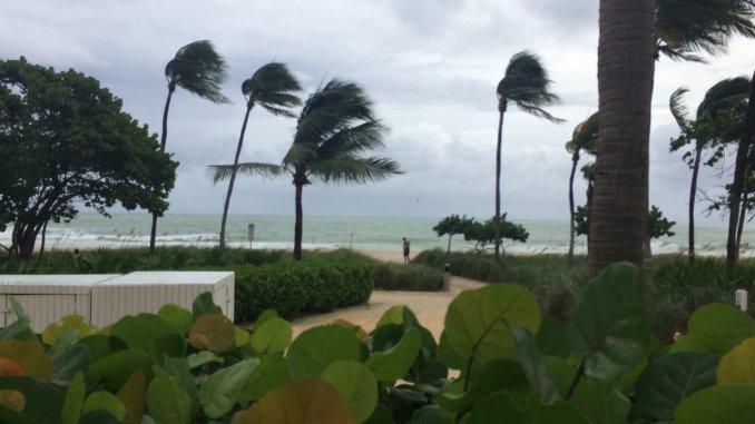 Miami se salvó de la intensidad de Matthew y ahora la atención está al noroeste de Florida
