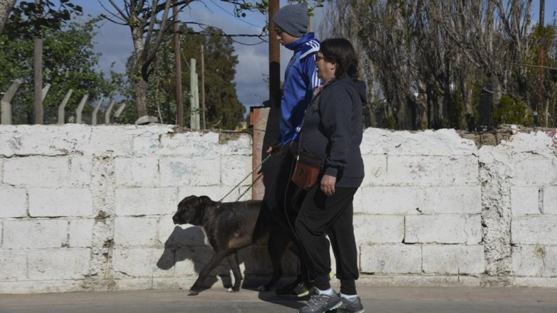 El proyecto que busca prohibir el paseo de perros en los espacios públicos genera controversia entre los dueños de las mascotas.