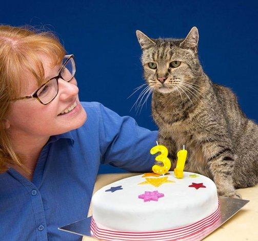 El gato más viejo del mundo celebró sus 31 años