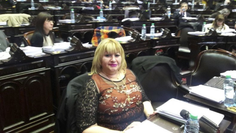 Ana Llanos cuestionó el proyecto del Ejecutivo nacional.