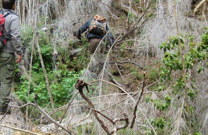 Salió a cosechar hongos y se cayó en un cañadón de 100 metros