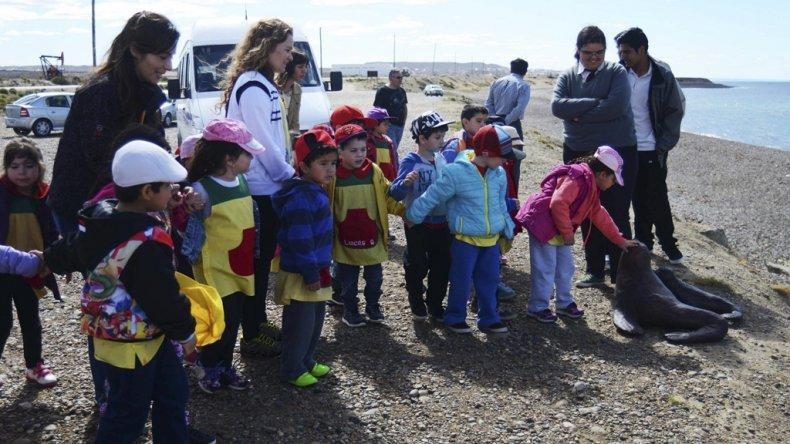 Un grupo de niños del Jardín N° 20 visitó la reserva de lobos marinos