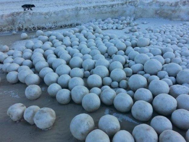 Bolas de nieve naturales y de distinto tamaño han cubierto parte del golfo de Ob. Foto: SERGEI BYCHENKOV