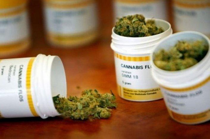 Sin autocultivo, se aprobó el uso medicinal del cannabis en Diputados