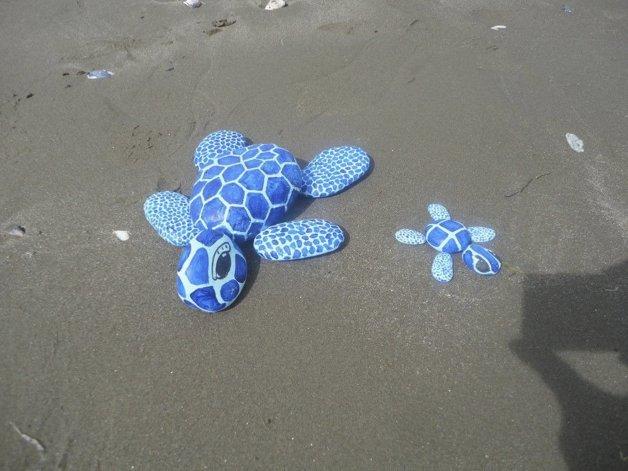 Las tortugas azules llamaron la atención de las personas que se encontraban caminando por Rada Tilly.