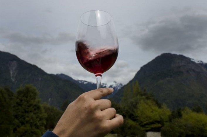 Por el cambio climático se logran vinos en la Patagonia chilena