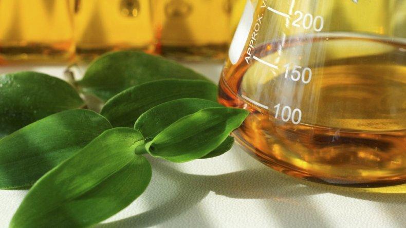 Las exportaciones argentinas de biodiesel tienen como principal destino el mercado estadounidense.