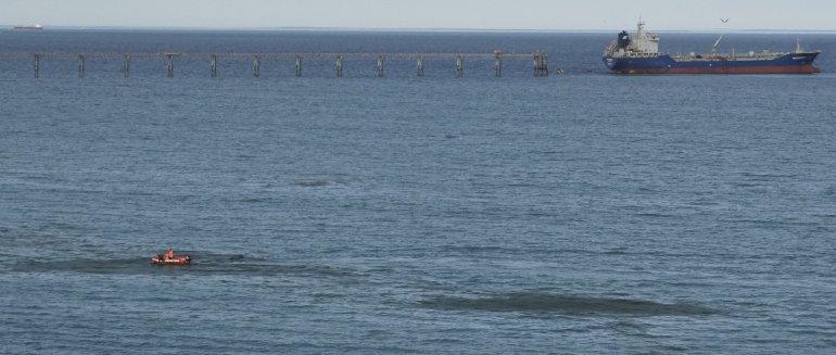 Las manchas oscuras de algas en la costa céntrica ayer movilizaron a Prefectura y a decenas de curiosos.