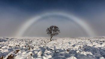 un fotografo retrato un inusual arcoiris blanco