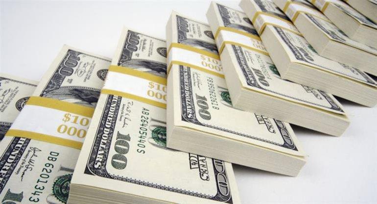 El dólar inicia el año a $ 16,20