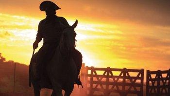 ¿por que se celebra hoy el dia nacional del gaucho?