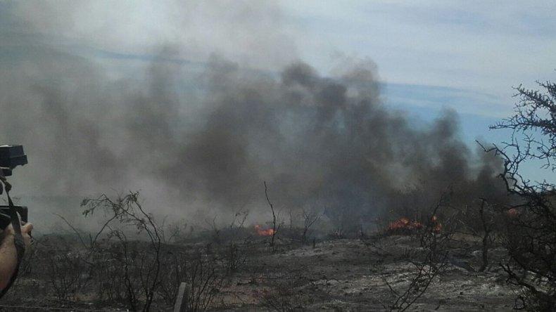 Quedó extinguido el incendio de campos en Puerto Madryn