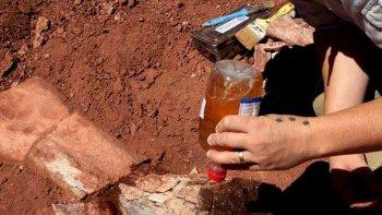 Encontraron restos de un Titanosaurio en Vaca Muerta