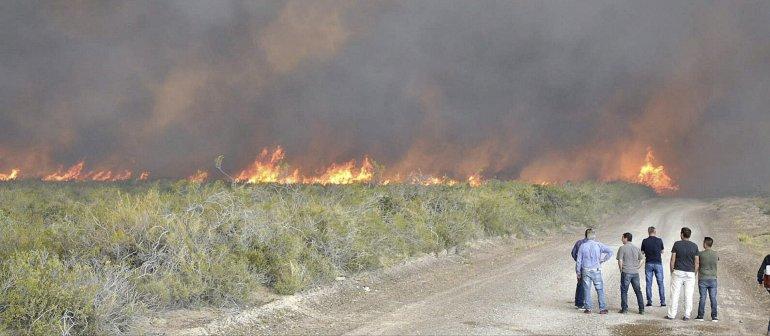 La visita de funcionarios provinciales al punto central del incendio en Puerto Lobos.