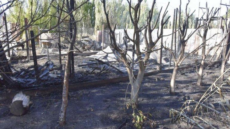 Realizan tareas de saneamiento en el  Cordón Forestal para evitar incendios