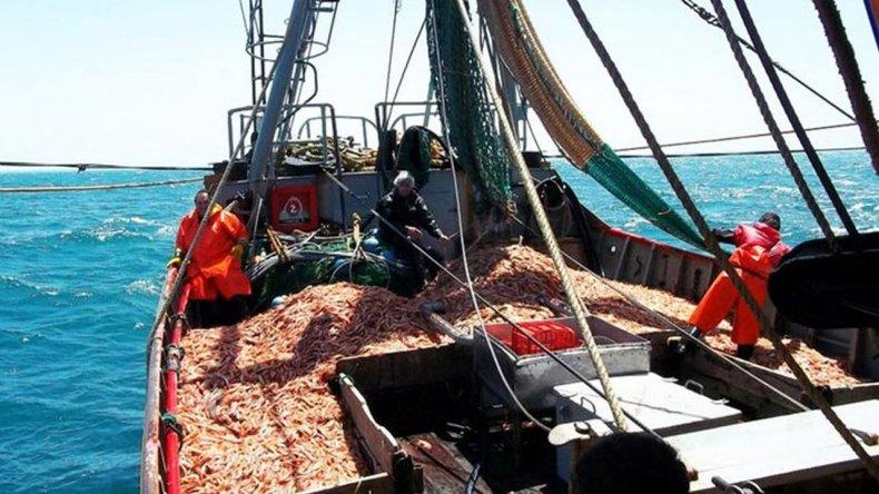 Los puertos de Comodoro y Rawson líderes en 2016 en la descarga de langostino