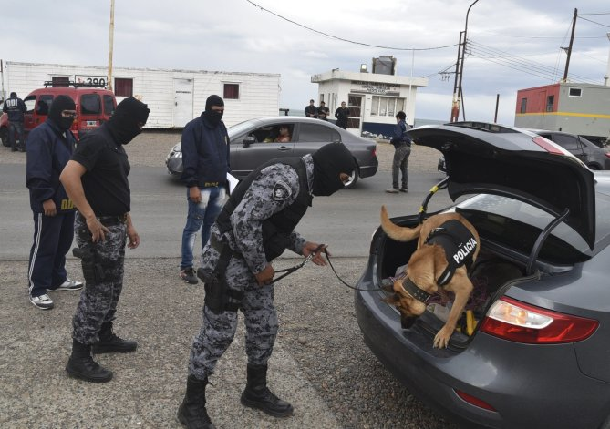 En el operativo la policía utilizó canes adiestrados para detectar estupefacientes.