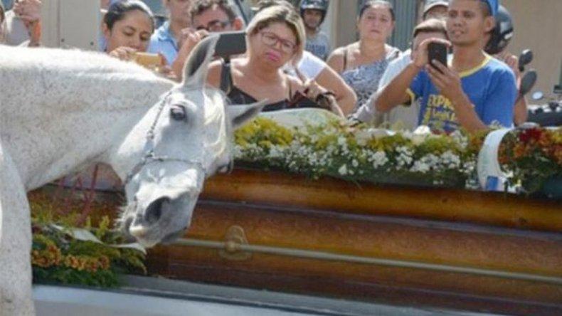 El caballo que lloró ante el ataúd el cuerpo de su jinete